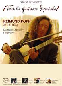 Plakat GitarrePurSolo Thumb